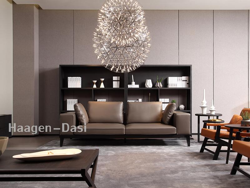 【哈根达私·欧尚格家居】意式现代极简客厅北美白蜡木实木艺术前卫沙发+茶几组合